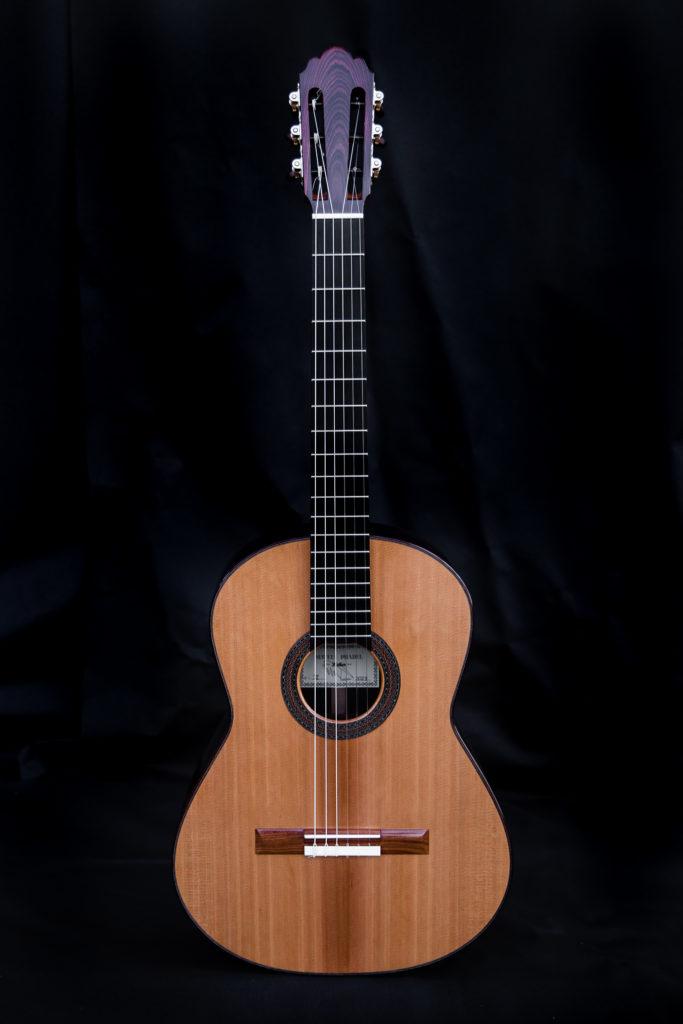 Guitares Pradel XI