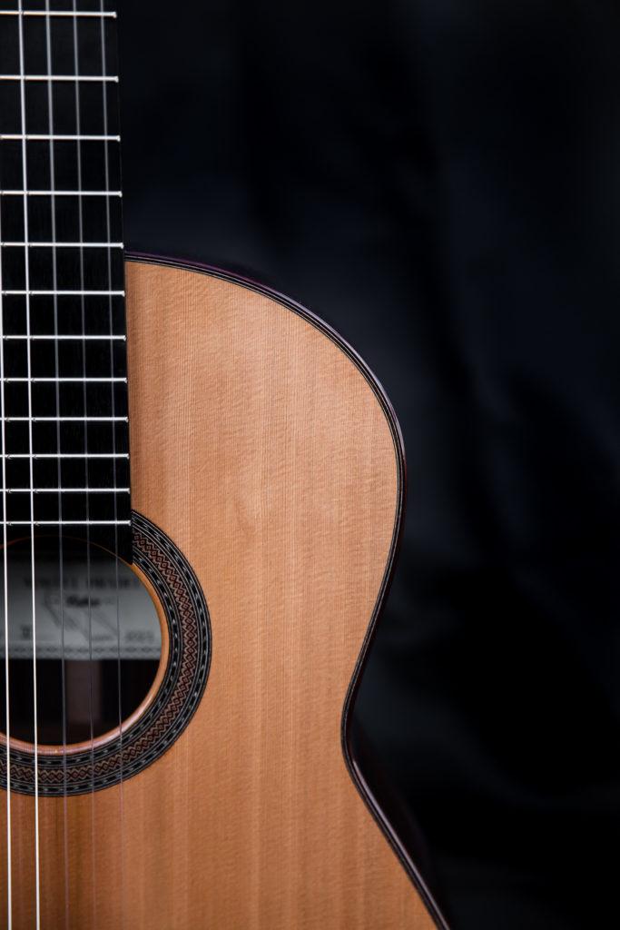 Guitares pradel X musique