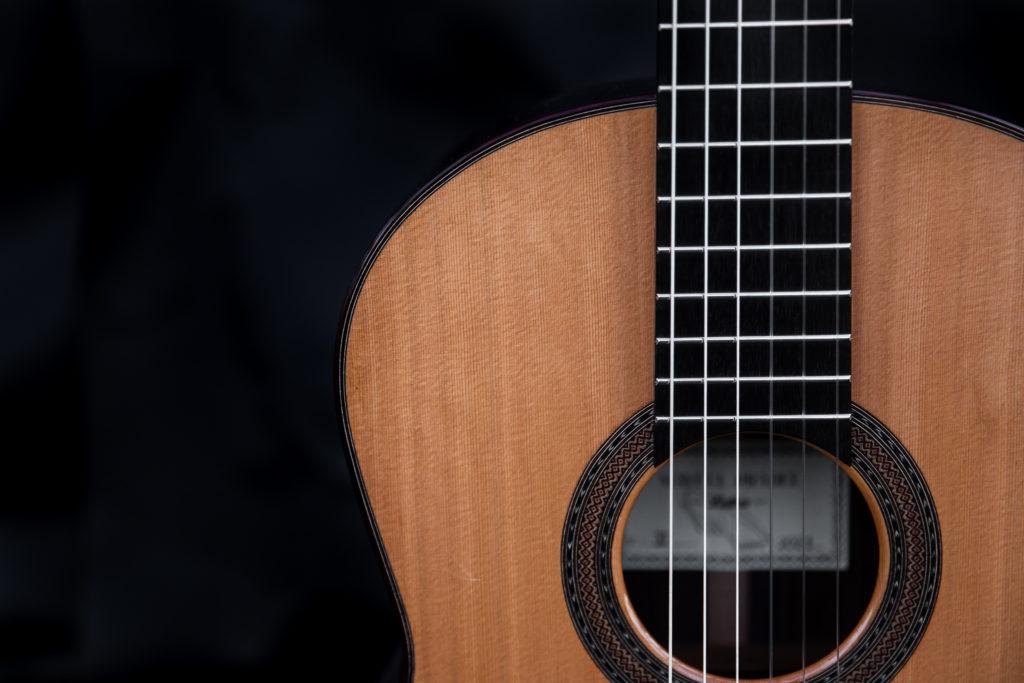 Guitares Pradel XI touche