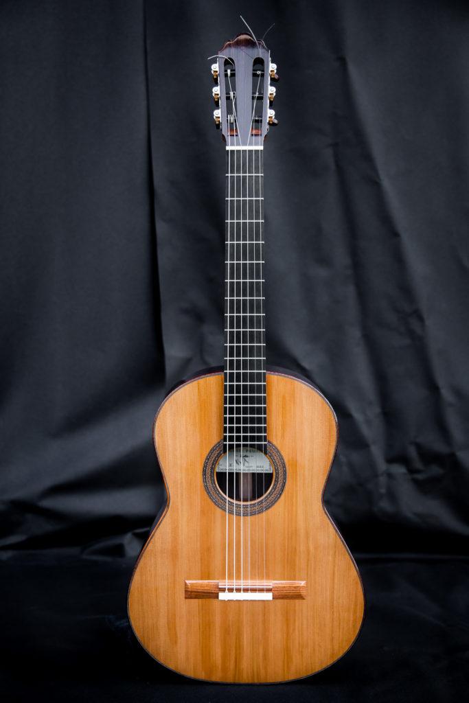 Guitares pradel X complete