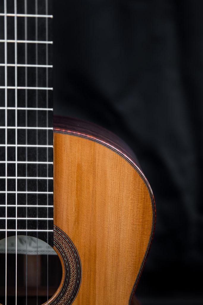Guitares pradel X touche