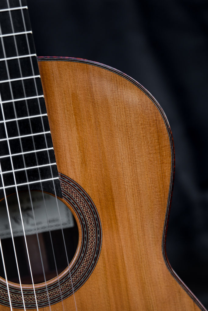 Guitares pradel X